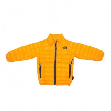sewa-Baju Musim Dingin Anak-The North Face Toddler ThermoBall Ful Zip Jacket